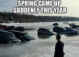 Spring came up memes